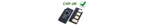 Chip-uri